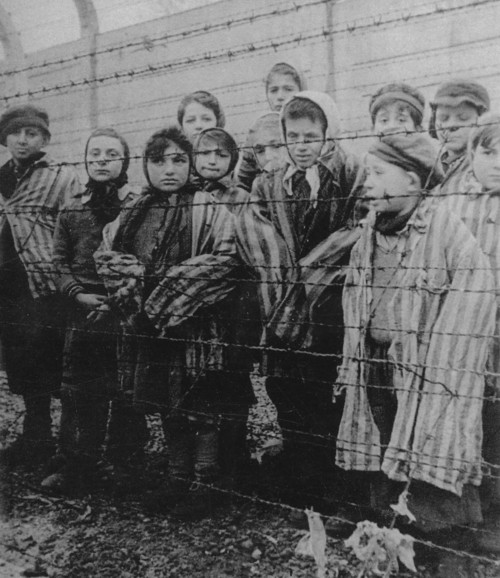 a biography and life work of elie wiesel and the horrors of the holocaust during the world war two
